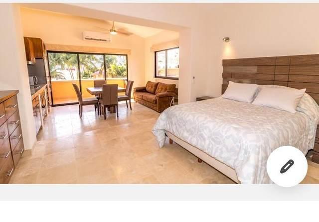 Carretera Transpeninsular E-302, San Jose del Cabo, BS  (MLS #20-3302) :: Own In Cabo Real Estate