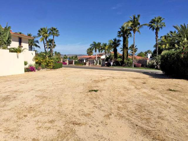 5 ., San Jose Corridor, BS  (MLS #20-3395) :: Own In Cabo Real Estate