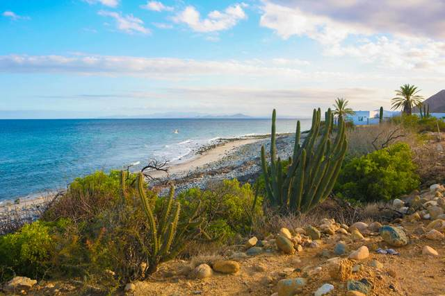 Gudor Beachfront Lot 15, East Cape, BS  (MLS #20-3446) :: Own In Cabo Real Estate