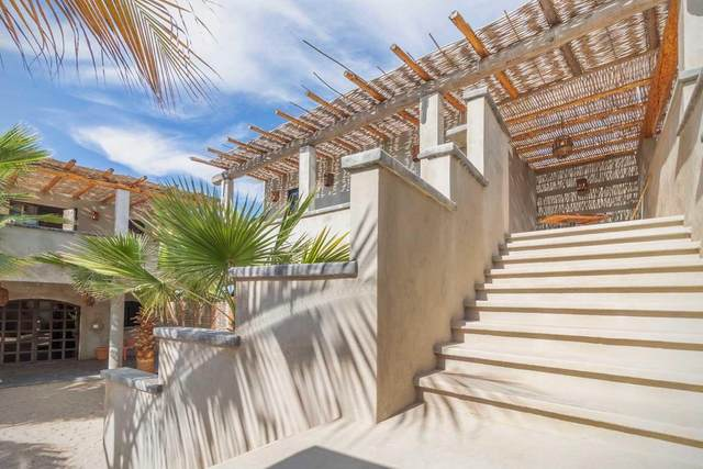 Calle S/N, Pacific, BS  (MLS #20-3455) :: Own In Cabo Real Estate