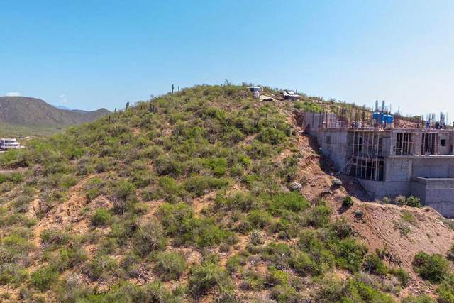 Calle S/N, Pacific, BS  (MLS #20-3456) :: Own In Cabo Real Estate