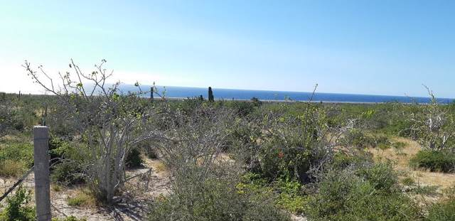 Sin Nombre Lot 426, Pacific, BS  (MLS #20-379) :: Own In Cabo Real Estate