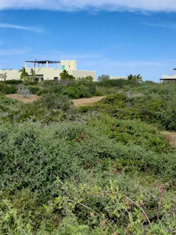 C-148, East Cape, BS  (MLS #20-447) :: Los Cabos Agent