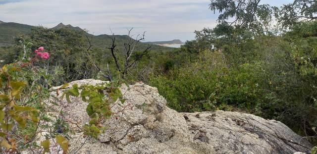 Manzana 1, Lot 71, San Jose del Cabo, BS  (MLS #20-532) :: Own In Cabo Real Estate