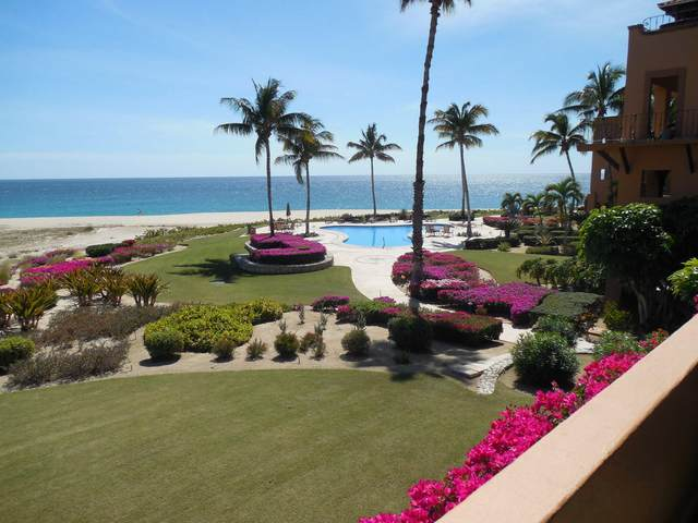 Cabo Real Km 19.5  Carret Trans. #202, San Jose Corridor, BS  (MLS #20-549) :: Own In Cabo Real Estate