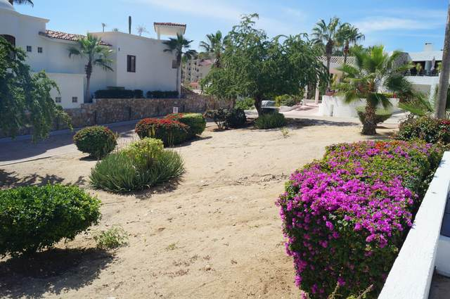 Camino A La Playa, Cabo Corridor, BS  (MLS #20-585) :: Own In Cabo Real Estate