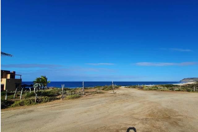 El Gavilan, Pacific, BS  (MLS #20-596) :: Los Cabos Agent