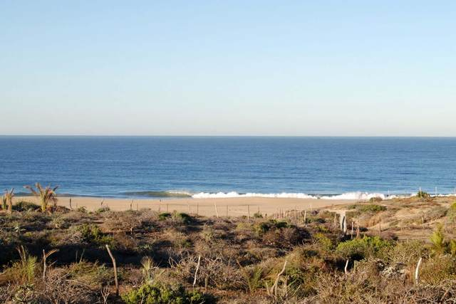 El Gavilan, Pacific, BS  (MLS #20-597) :: Los Cabos Agent
