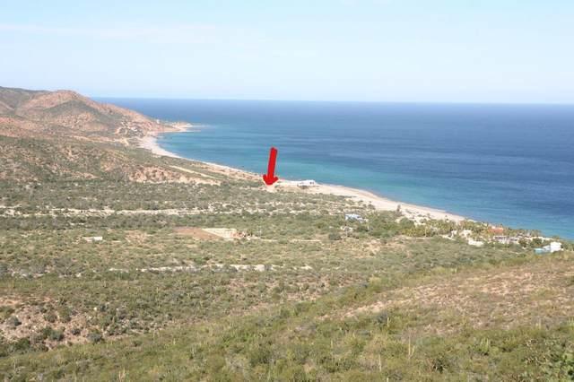 Comino De Cardonal, East Cape, BS  (MLS #20-613) :: Own In Cabo Real Estate