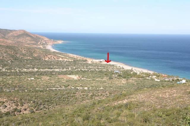 Comino De Cardonal, East Cape, BS  (MLS #20-614) :: Own In Cabo Real Estate