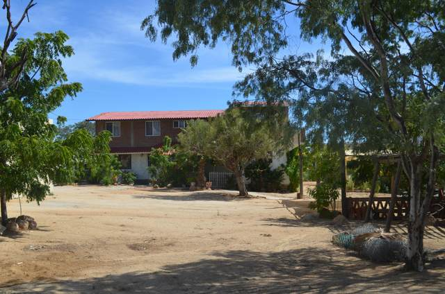 Lote 002 Manzana ''N'', Cabo San Lucas, BS  (MLS #20-666) :: Own In Cabo Real Estate