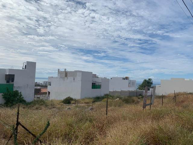 Aripes, La Paz, BS  (MLS #20-686) :: Own In Cabo Real Estate