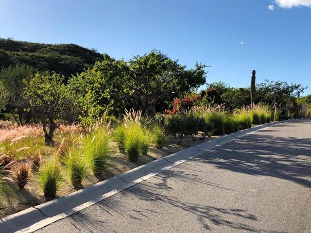 Homesite #33, Oasis Palmilla, San Jose Corridor, BS  (MLS #20-7) :: Own In Cabo Real Estate