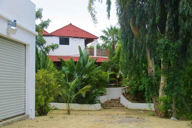 Sn Pescadero, Pacific, BS  (MLS #20-708) :: Los Cabos Agent