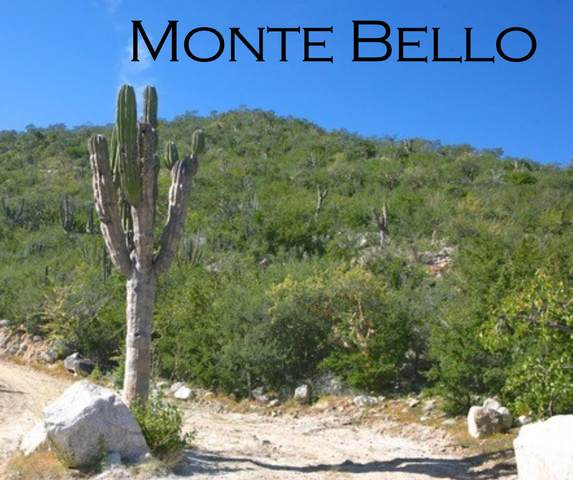 Monte Bello, East Cape, BS  (MLS #20-720) :: Coldwell Banker Riveras