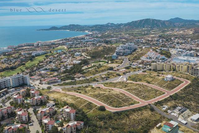 Lot 10-34 Cerro Del Vigia, San Jose del Cabo, BS  (MLS #20-730) :: Own In Cabo Real Estate