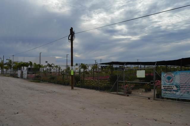 Transpeninsular Highway, La Paz, BS  (MLS #20-754) :: Ronival