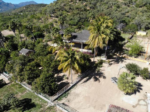 Santa Anita, San Jose del Cabo, BS  (MLS #20-793) :: Own In Cabo Real Estate