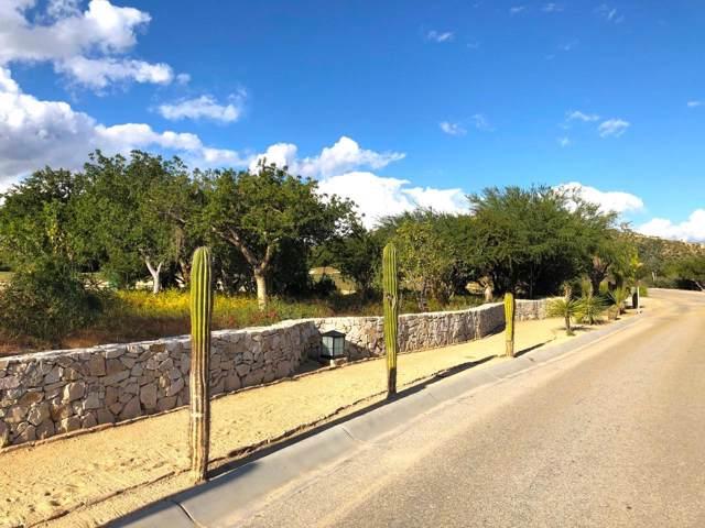 Homesite #37, Oasis Palmilla, San Jose Corridor, BS  (MLS #20-8) :: Own In Cabo Real Estate