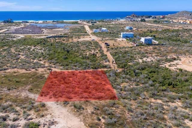 2231 Cerritos Beach, Pacific, BS  (MLS #20-810) :: Los Cabos Agent