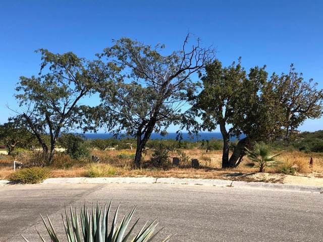 Oasis Palmilla Homesite #40, San Jose Corridor, BS  (MLS #20-818) :: Own In Cabo Real Estate