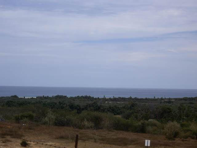 Sin Nombre, East Cape, BS  (MLS #20-984) :: Own In Cabo Real Estate