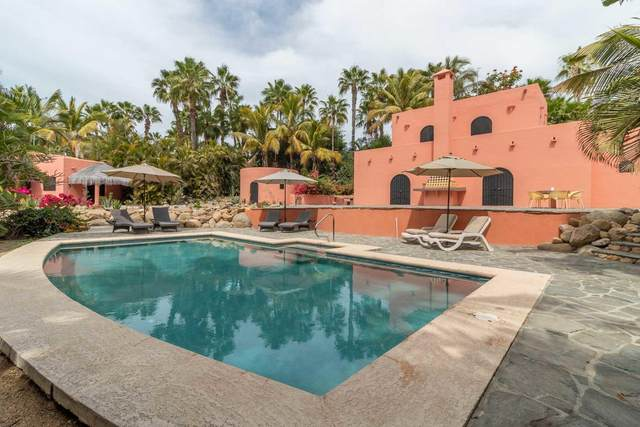 Calle S/N, Pacific, BS  (MLS #21-1042) :: Own In Cabo Real Estate