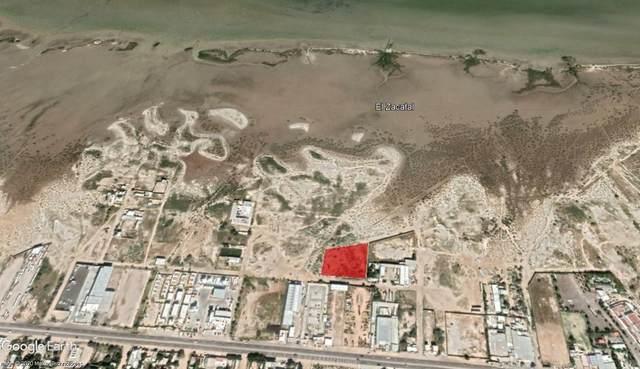 Calle De Acceso, La Paz, BS  (MLS #21-1044) :: Own In Cabo Real Estate
