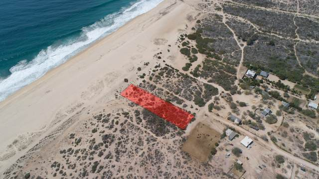 SN Fraccion D2b, Pacific, BS  (MLS #21-1055) :: Own In Cabo Real Estate