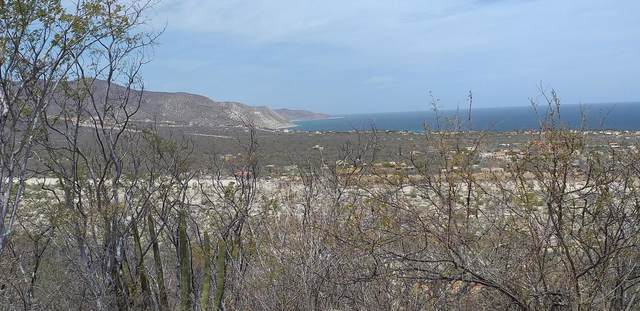 North Cerro Buenos Aires, Barriles,, East Cape, BS  (MLS #21-1116) :: Own In Cabo Real Estate