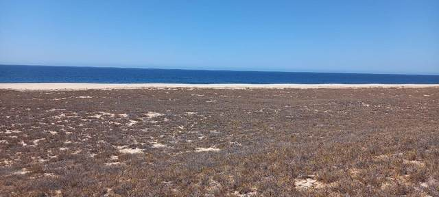 24 Camino De La Langosta, Agua Bl, Pacific, BS  (MLS #21-1127) :: Own In Cabo Real Estate
