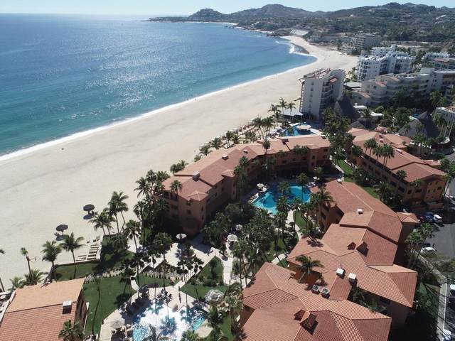 Carr. Transpeninsular 29.5 -C201-, San Jose del Cabo, BS  (MLS #21-119) :: Own In Cabo Real Estate