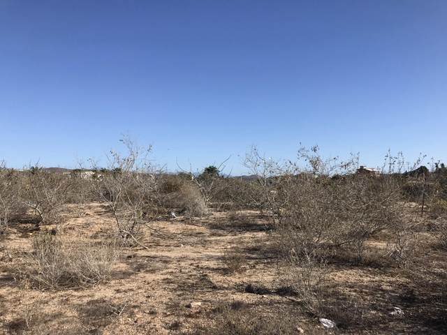 Lot 17 Manzana 185, Pacific, BS  (MLS #21-1210) :: Own In Cabo Real Estate