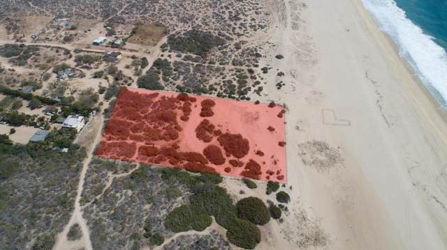 SN Rancho El Migrino, Pacific, BS  (MLS #21-1243) :: Own In Cabo Real Estate