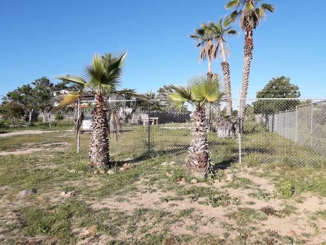 Zona 1 Brisas Del Pacifico, Pacific, BS  (MLS #21-1259) :: Own In Cabo Real Estate