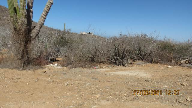 LOTE 2353 Mza 2, La Paz, BS  (MLS #21-1275) :: Own In Cabo Real Estate
