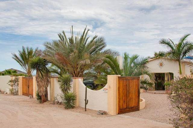 3 Calle Sin Nombre, Pacific, BS  (MLS #21-1285) :: Own In Cabo Real Estate