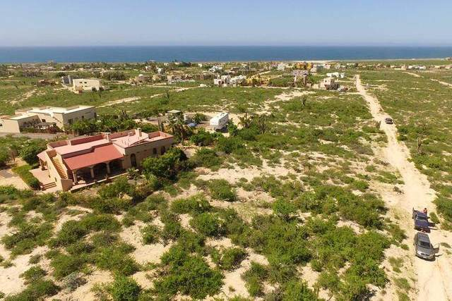 Fraccion D  Lote0747, Pacific, BS  (MLS #21-1293) :: Own In Cabo Real Estate