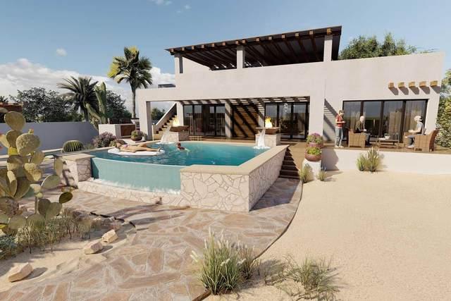 Callejon Del Gato, Pacific, BS  (MLS #21-1297) :: Own In Cabo Real Estate
