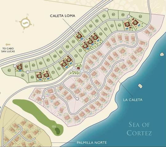 Caleta Loma, San Jose Corridor, BS  (MLS #21-1311) :: Own In Cabo Real Estate