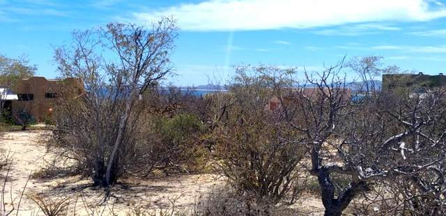 Isla Natividad, La Paz, BS  (MLS #21-1357) :: Own In Cabo Real Estate