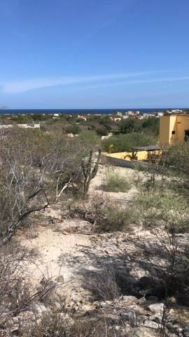 Hilltop Road, Buenas Aires, East Cape, BS  (MLS #21-1358) :: Own In Cabo Real Estate