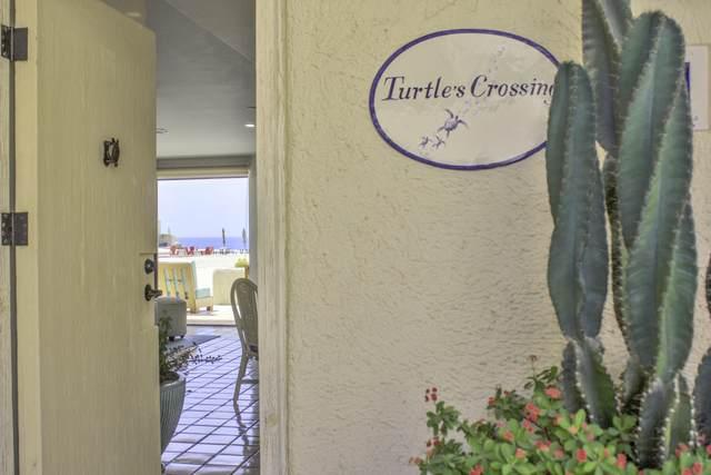 Av. Solmar #169, Cabo San Lucas, BS  (MLS #21-1374) :: Own In Cabo Real Estate
