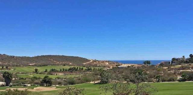 Mision San Felipe, San Jose del Cabo, BS  (MLS #21-1429) :: Own In Cabo Real Estate