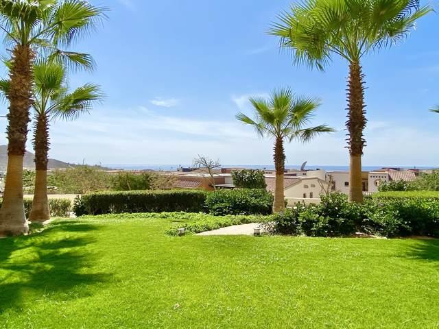 Predio Paraiso #4104, Pacific, BS  (MLS #21-1469) :: Own In Cabo Real Estate