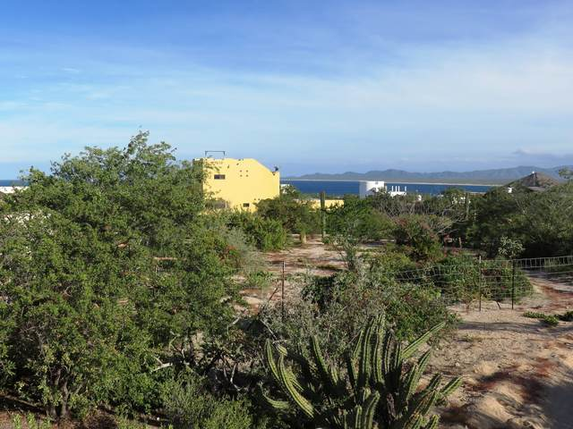 Isla San Esteban, La Paz, BS  (MLS #21-1498) :: Coldwell Banker Riveras