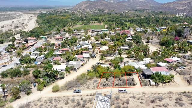 Animas Bajas, San Jose del Cabo, BS  (MLS #21-1532) :: Own In Cabo Real Estate
