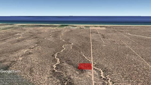 Taller De Terreno, Pacific, BS  (MLS #21-1542) :: Own In Cabo Real Estate