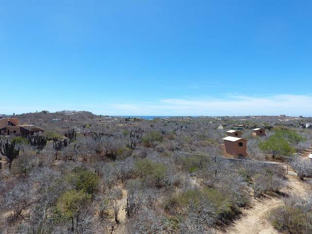 Manzana Xiv Lot 7, East Cape, BS  (MLS #21-1544) :: Own In Cabo Real Estate