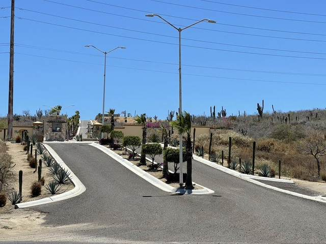 LOTE 5 F Rollins Hills, Pacific, BS  (MLS #21-1545) :: Own In Cabo Real Estate